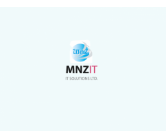 Mirza and Zahoor IT Solutions