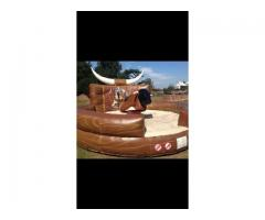 Rodeo Bull Hire UK